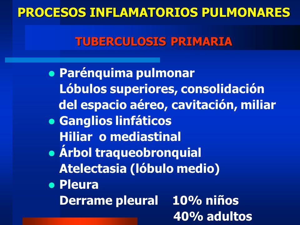 Parénquima pulmonar Lóbulos superiores, consolidación del espacio aéreo, cavitación, miliar Ganglios linfáticos Hiliar o mediastinal Árbol traqueobron