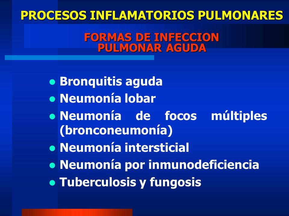 PROCESOS INFLAMATORIOS PULMONARES FORMAS DE INFECCION PULMONAR AGUDA Bronquitis aguda Neumonía lobar Neumonía de focos múltiples (bronconeumonía) Neum