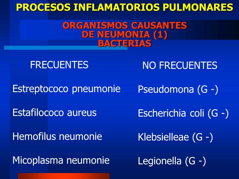PROCESOS INFLAMATORIOS PULMONARES ORGANISMOS CAUSANTES DE NEUMONIA (1) BACTERIAS FRECUENTES Estreptococo pneumonie Estafilococo aureus Hemofilus neumo