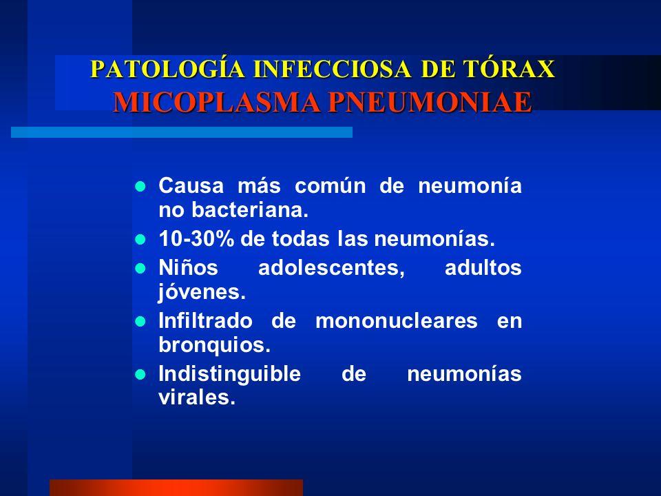 PATOLOGÍA INFECCIOSA DE TÓRAX MICOPLASMA PNEUMONIAE Causa más común de neumonía no bacteriana. 10-30% de todas las neumonías. Niños adolescentes, adul