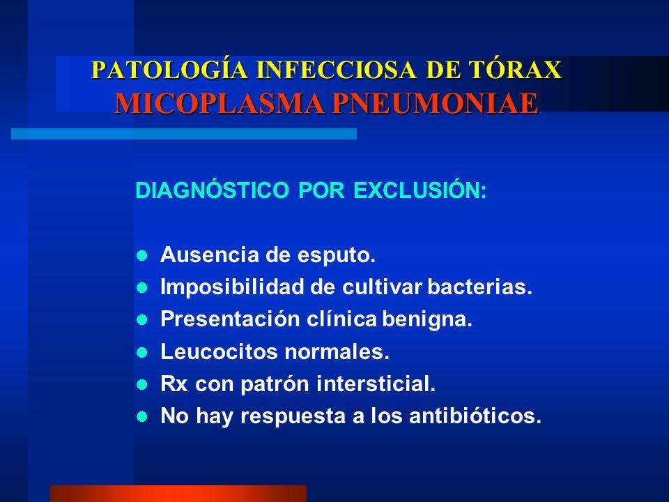 PATOLOGÍA INFECCIOSA DE TÓRAX MICOPLASMA PNEUMONIAE DIAGNÓSTICO POR EXCLUSIÓN: Ausencia de esputo. Imposibilidad de cultivar bacterias. Presentación c