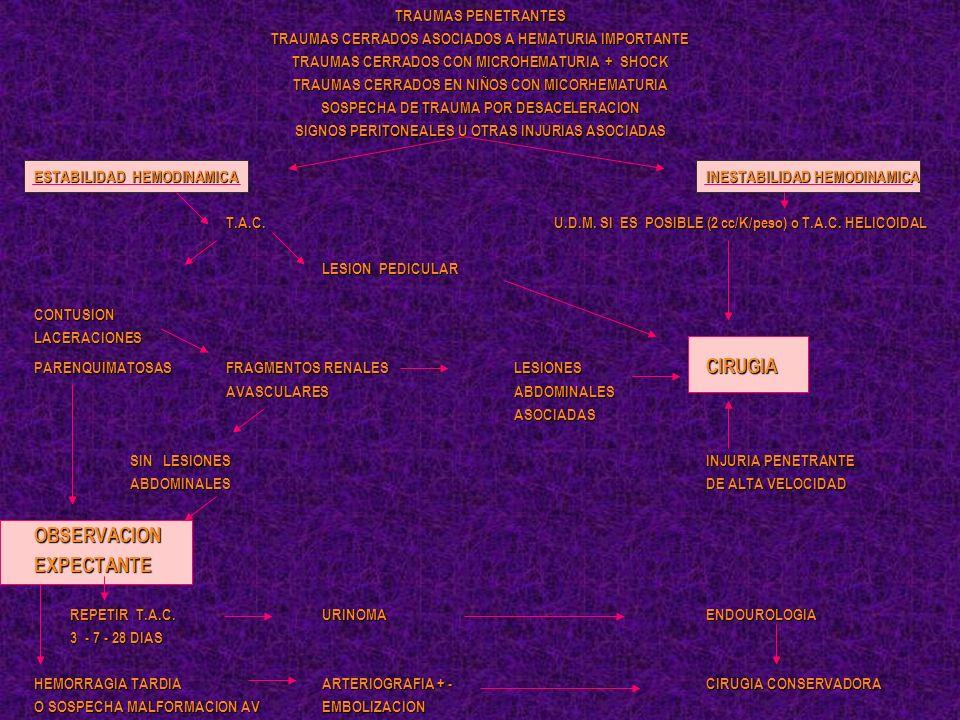 TRAUMAS PENETRANTES TRAUMAS CERRADOS ASOCIADOS A HEMATURIA IMPORTANTE TRAUMAS CERRADOS CON MICROHEMATURIA + SHOCK TRAUMAS CERRADOS EN NIÑOS CON MICORH