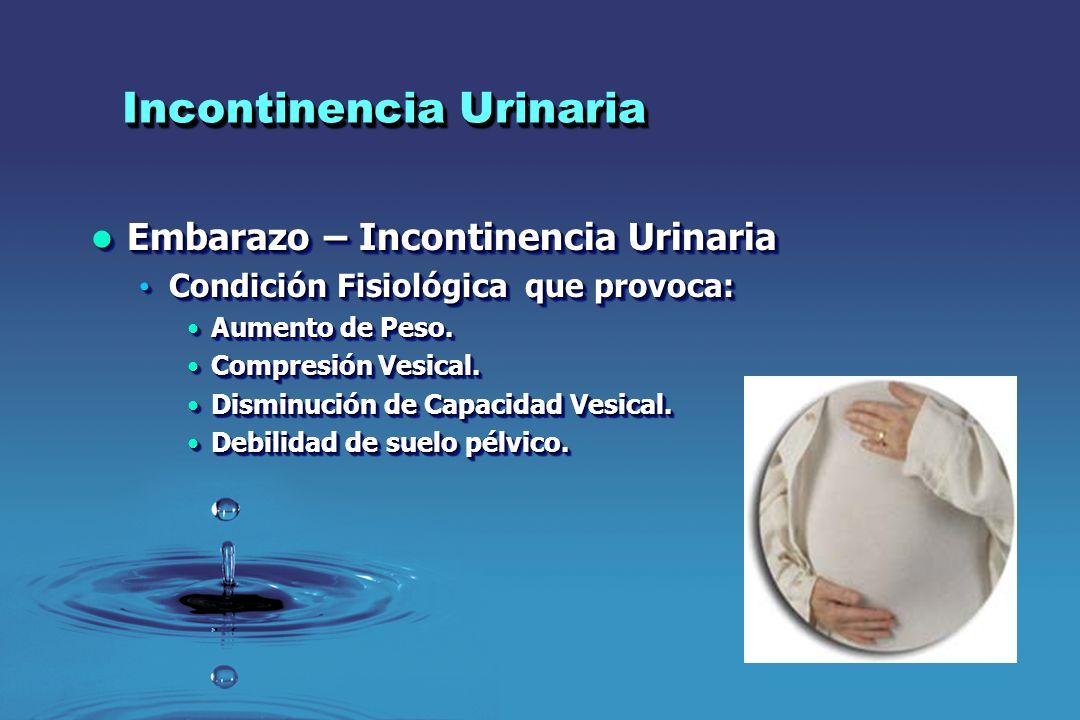 Incontinencia Urinaria Embarazo – Incontinencia Urinaria Embarazo – Incontinencia Urinaria Condición Fisiológica que provoca: Condición Fisiológica qu