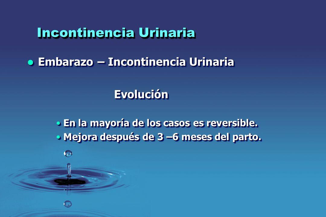 Incontinencia Urinaria Embarazo – Incontinencia Urinaria Embarazo – Incontinencia UrinariaEvolución En la mayoría de los casos es reversible.En la may
