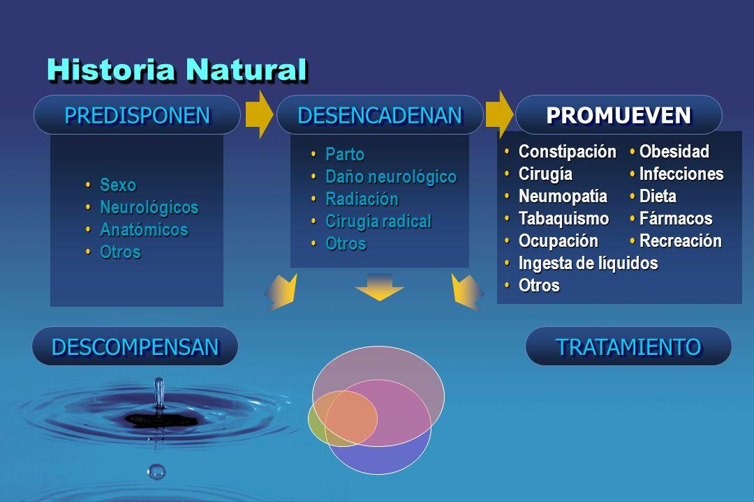 Sexo Sexo Neurológicos Neurológicos Anatómicos Anatómicos Otros Otros Parto Parto Daño neurológico Daño neurológico Radiación Radiación Cirugía radica