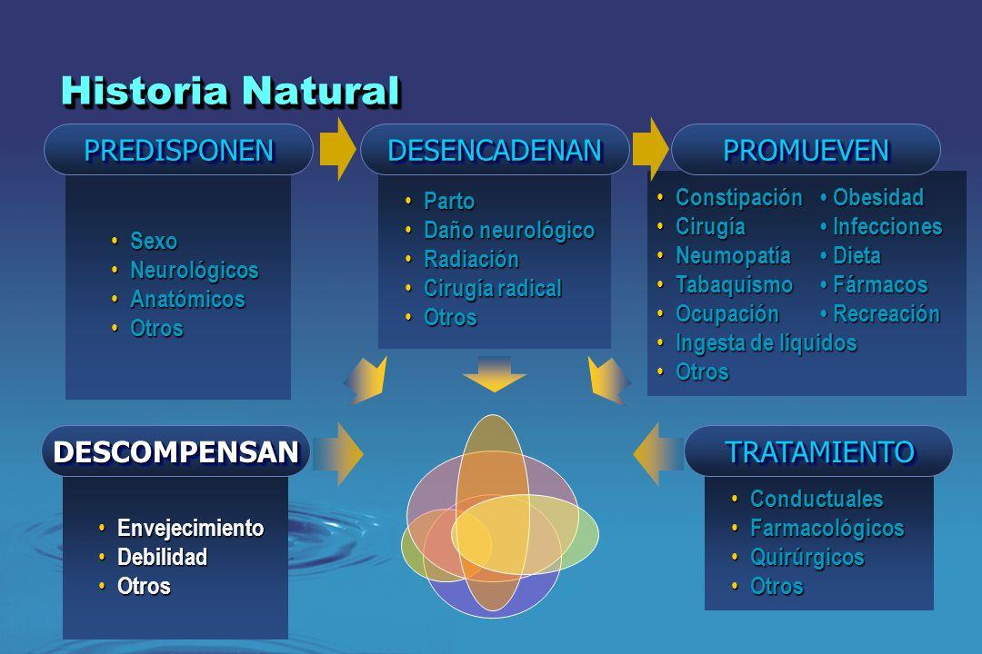Sexo Sexo Neurológicos Neurológicos Anatómicos Anatómicos Otros Otros Conductuales Conductuales Farmacológicos Farmacológicos Quirúrgicos Quirúrgicos