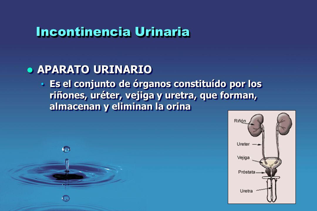 Incontinencia Urinaria Embarazo – Incontinencia Urinaria Embarazo – Incontinencia Urinaria Factores de Riesgo Factores de Riesgo Madre > 35 años.Madre > 35 años.