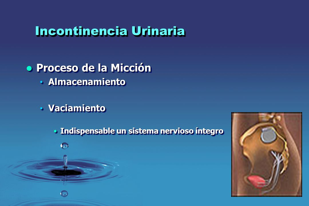 Incontinencia Urinaria Proceso de la Micción Proceso de la Micción Almacenamiento Almacenamiento Vaciamiento Vaciamiento Indispensable un sistema nerv
