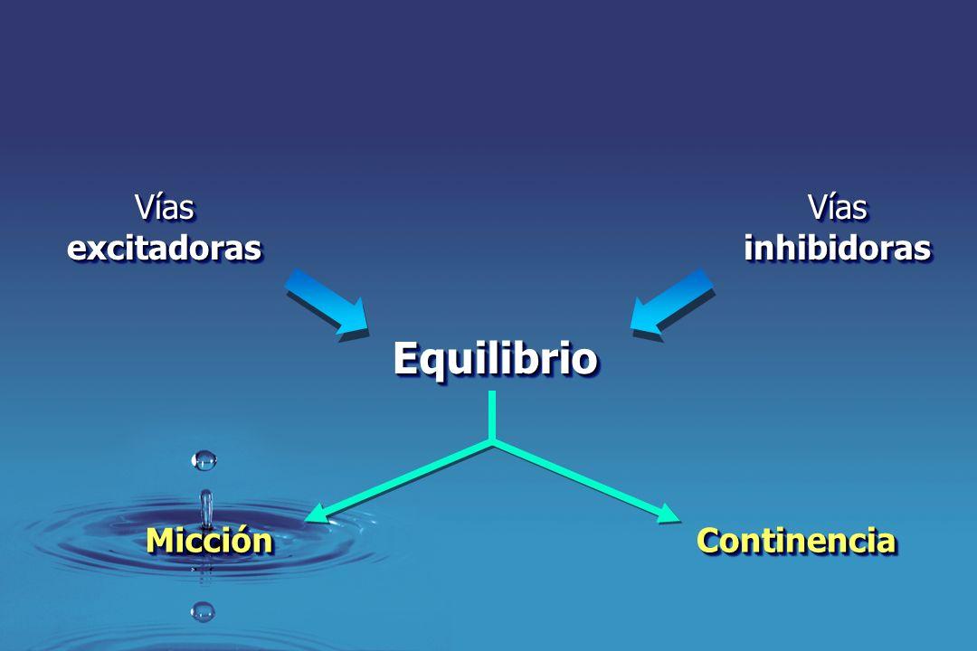 EquilibrioEquilibrio VíasexcitadorasVíasexcitadorasVíasinhibidorasVíasinhibidoras ContinenciaContinenciaMicciónMicción
