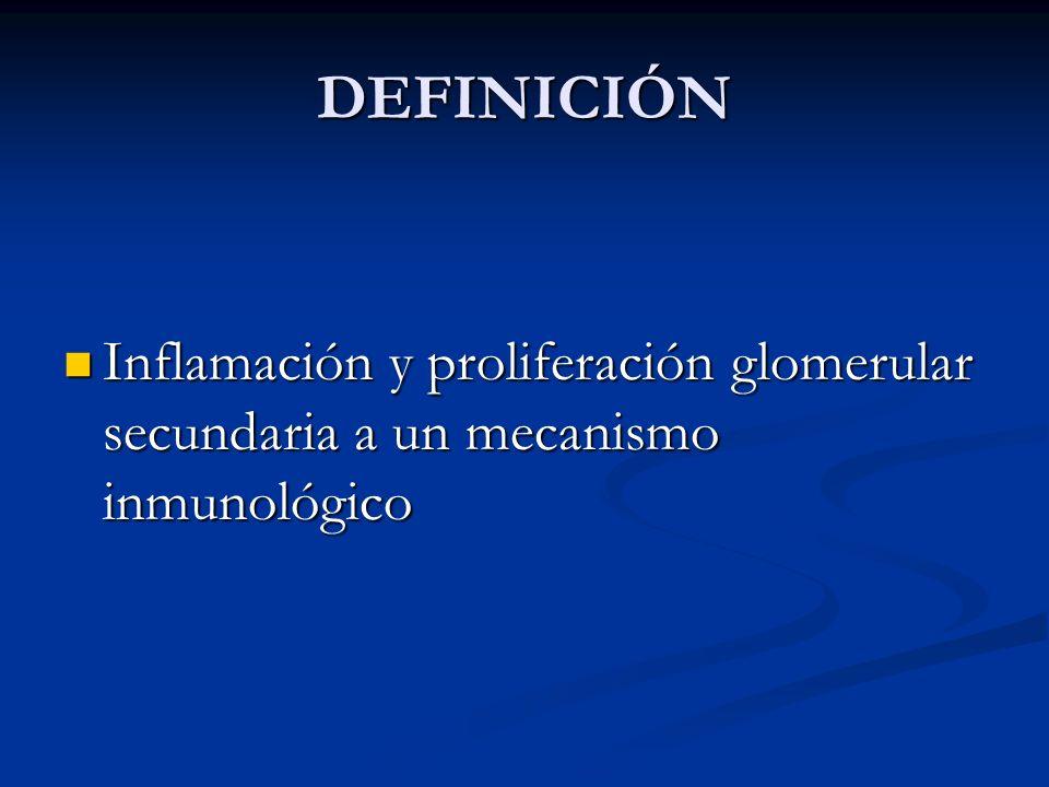 DEFINICIÓN Inflamación y proliferación glomerular secundaria a un mecanismo inmunológico Inflamación y proliferación glomerular secundaria a un mecani