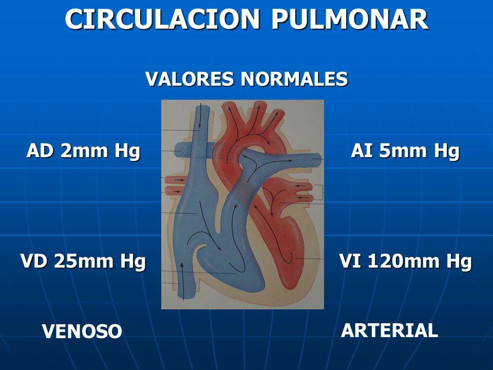 CIRCULACION PULMONAR VALORES NORMALES AD 2mm Hg VD 25mm Hg AI 5mm Hg VI 120mm Hg VENOSO ARTERIAL