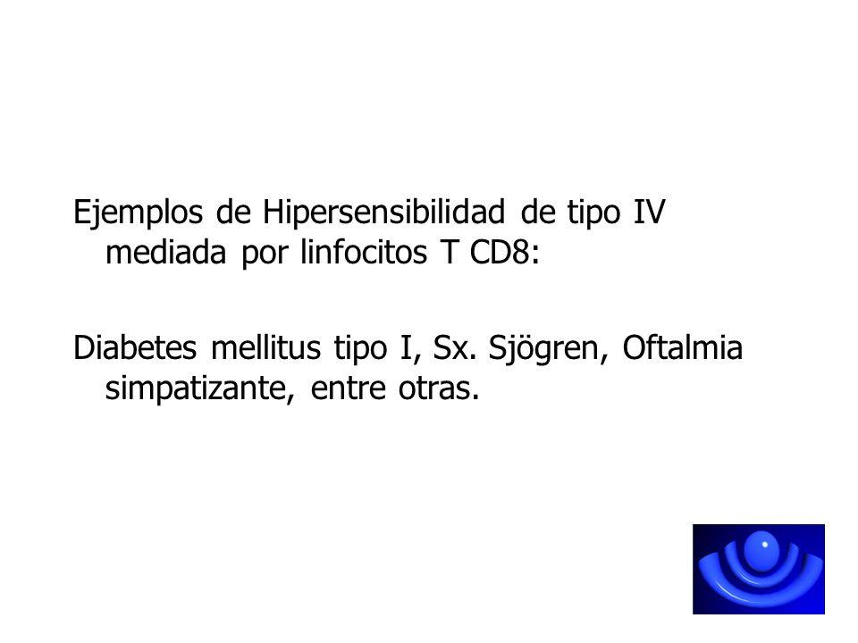Ejemplos de Hipersensibilidad de tipo IV mediada por linfocitos T CD8: Diabetes mellitus tipo I, Sx. Sjögren, Oftalmia simpatizante, entre otras.