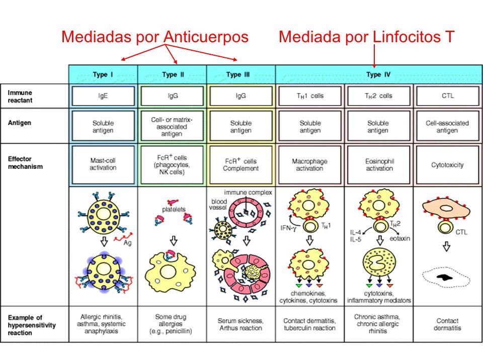 Apoptosis de la célula blanco