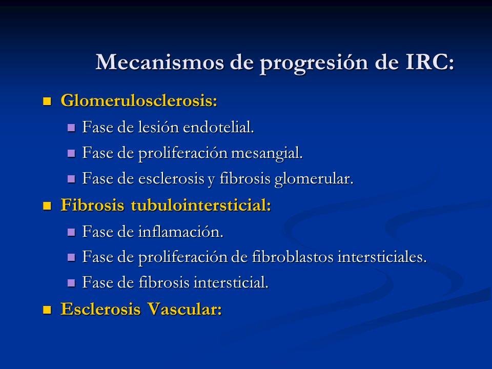 Mecanismos de progresión de IRC: Glomerulosclerosis: Glomerulosclerosis: Fase de lesión endotelial. Fase de lesión endotelial. Fase de proliferación m