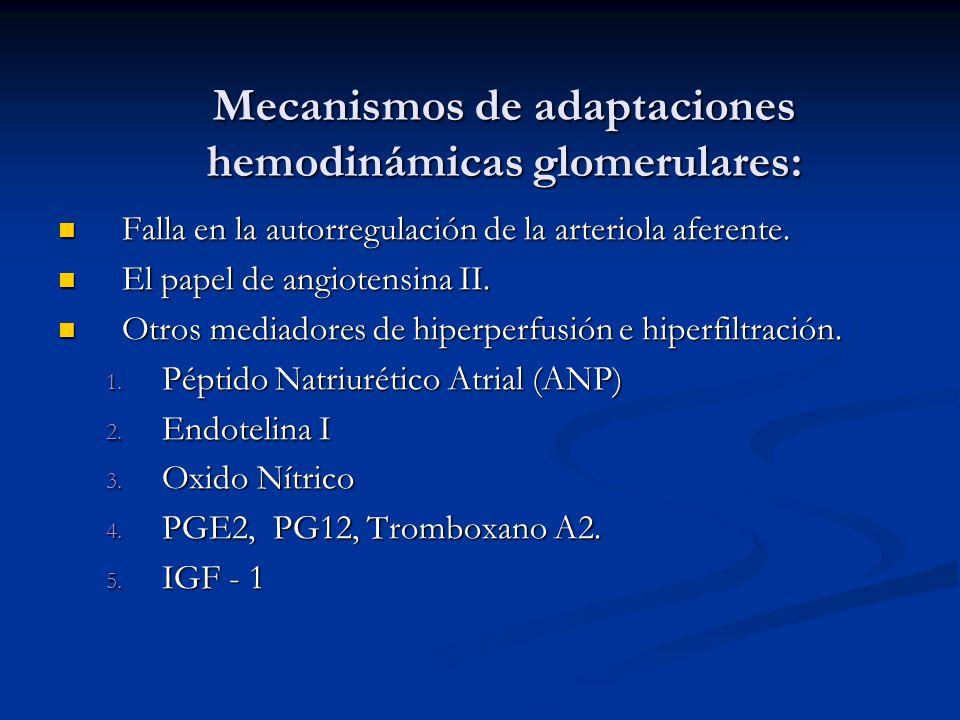 Mecanismos de adaptaciones hemodinámicas glomerulares: Mecanismos de adaptaciones hemodinámicas glomerulares: Falla en la autorregulación de la arteri