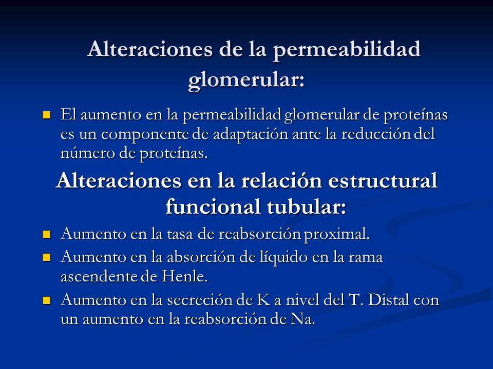 Alteraciones de la permeabilidad glomerular: Alteraciones de la permeabilidad glomerular: El aumento en la permeabilidad glomerular de proteínas es un