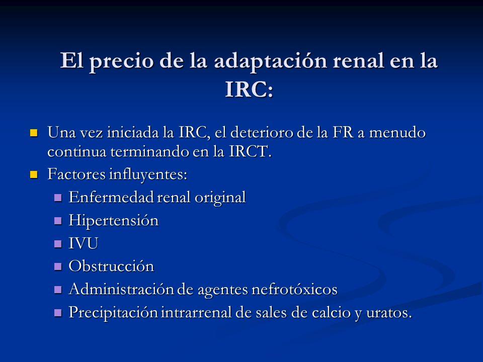 El precio de la adaptación renal en la IRC: Una vez iniciada la IRC, el deterioro de la FR a menudo continua terminando en la IRCT. Una vez iniciada l