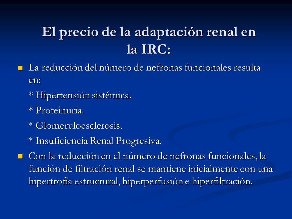 El precio de la adaptación renal en la IRC: La reducción del número de nefronas funcionales resulta en: La reducción del número de nefronas funcionale