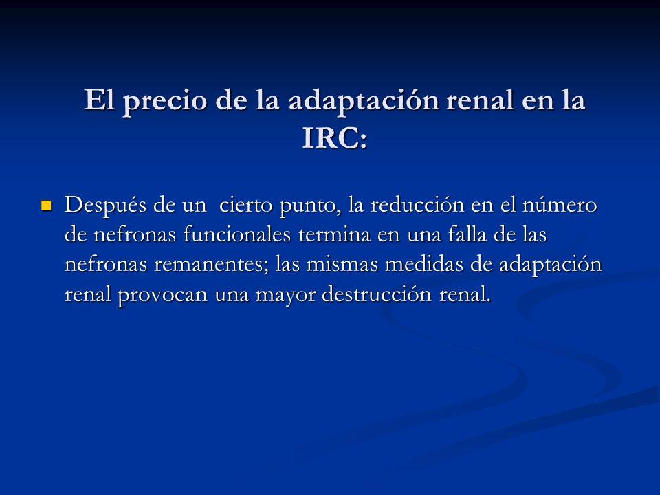 El precio de la adaptación renal en la IRC: Después de un cierto punto, la reducción en el número de nefronas funcionales termina en una falla de las
