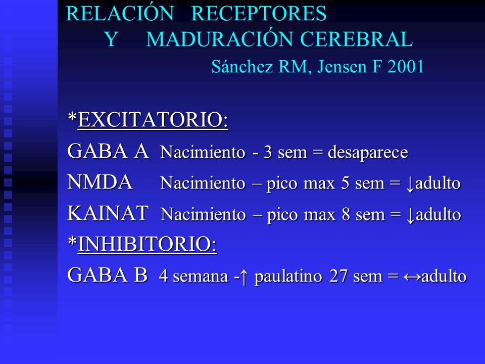 RELACIÓN RECEPTORES Y MADURACIÓN CEREBRAL Sánchez RM, Jensen F 2001 *EXCITATORIO: GABA A Nacimiento - 3 sem = desaparece NMDA Nacimiento – pico max 5