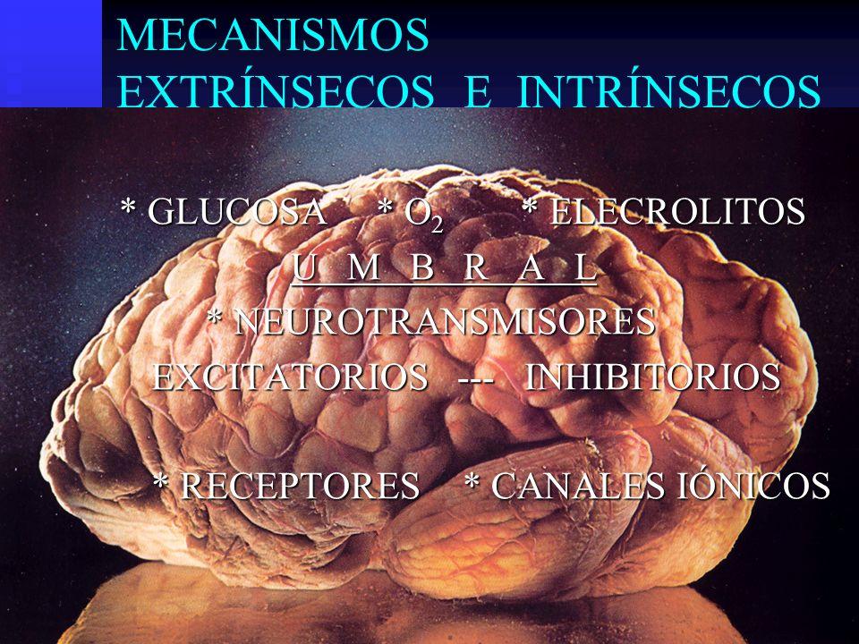 MECANISMOS EXTRÍNSECOS E INTRÍNSECOS * GLUCOSA * O 2 * ELECROLITOS U M B R A L * NEUROTRANSMISORES EXCITATORIOS --- INHIBITORIOS * RECEPTORES* CANALES