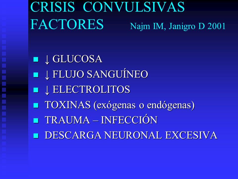 CRISIS CONVULSIVAS FACTORES Najm IM, Janigro D 2001 GLUCOSA GLUCOSA FLUJO SANGUÍNEO FLUJO SANGUÍNEO ELECTROLITOS ELECTROLITOS TOXINAS (exógenas o endó