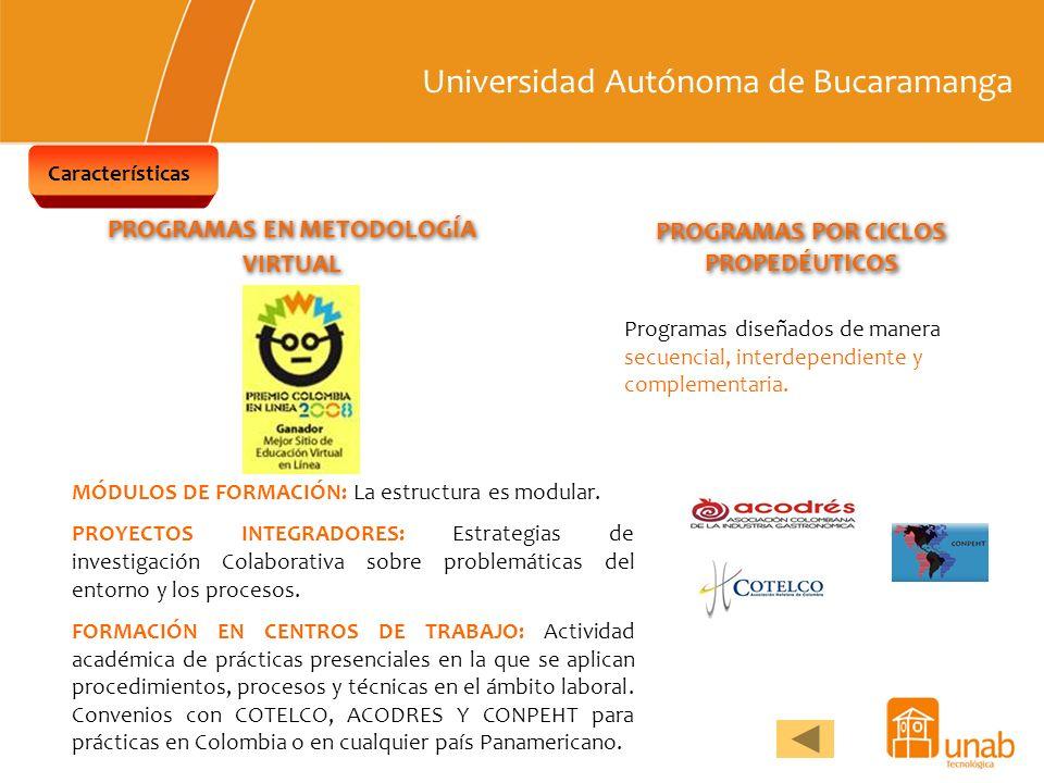 Universidad Autónoma de Bucaramanga Características PROGRAMAS EN METODOLOGÍA VIRTUAL PROGRAMAS POR CICLOS PROPEDÉUTICOS MÓDULOS DE FORMACIÓN: La estru