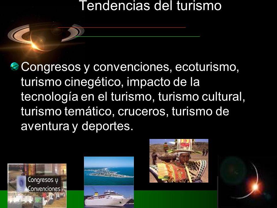 Congresos y convenciones, ecoturismo, turismo cinegético, impacto de la tecnología en el turismo, turismo cultural, turismo temático, cruceros, turismo de aventura y deportes.