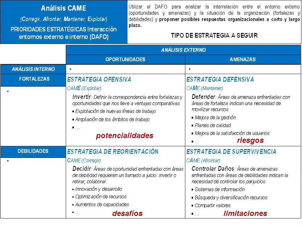 Proyecto PLANES ESTRATÉGICOS REDES ARAGÓN 2009-2010 potencialidades riesgos desafíoslimitaciones
