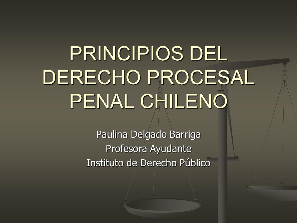 PRINCIPIOS DEL DERECHO PROCESAL PENAL CHILENO Paulina Delgado Barriga Profesora Ayudante Instituto de Derecho Público