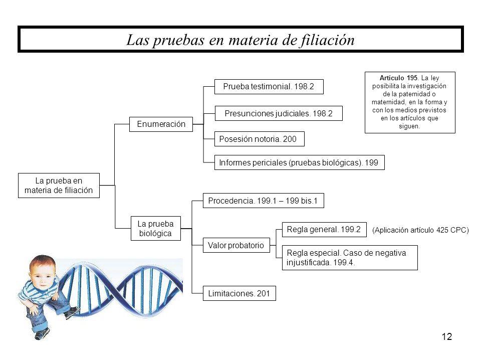 La prueba en materia de filiación 12 Las pruebas en materia de filiación Enumeración La prueba biológica Prueba testimonial. 198.2 Presunciones judici
