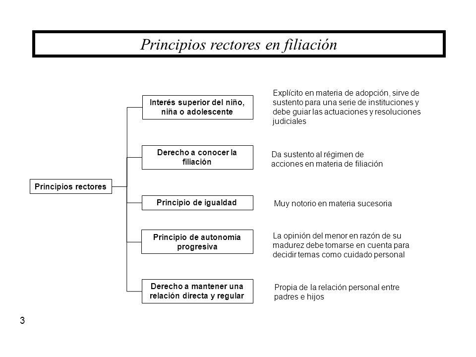 Principios rectores en filiación Principios rectores 3 Derecho a conocer la filiación Interés superior del niño, niña o adolescente Principio de auton