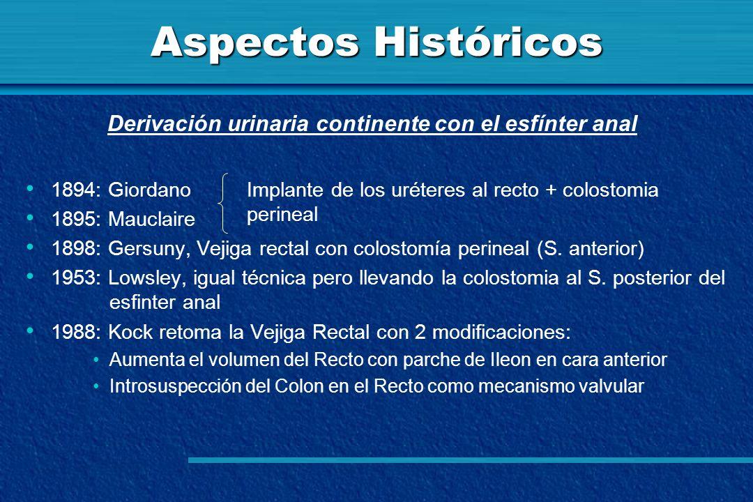 Aspectos Históricos 1894: Giordano 1895: Mauclaire 1898: Gersuny, Vejiga rectal con colostomía perineal (S. anterior) 1953: Lowsley, igual técnica per