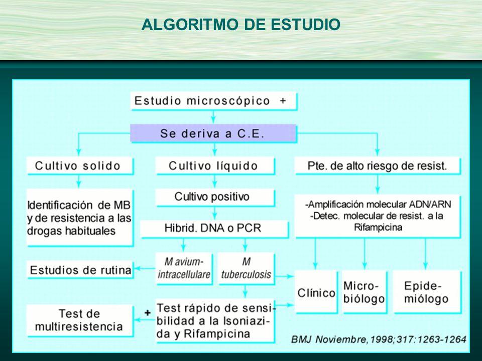 ALGORITMO DE ESTUDIO