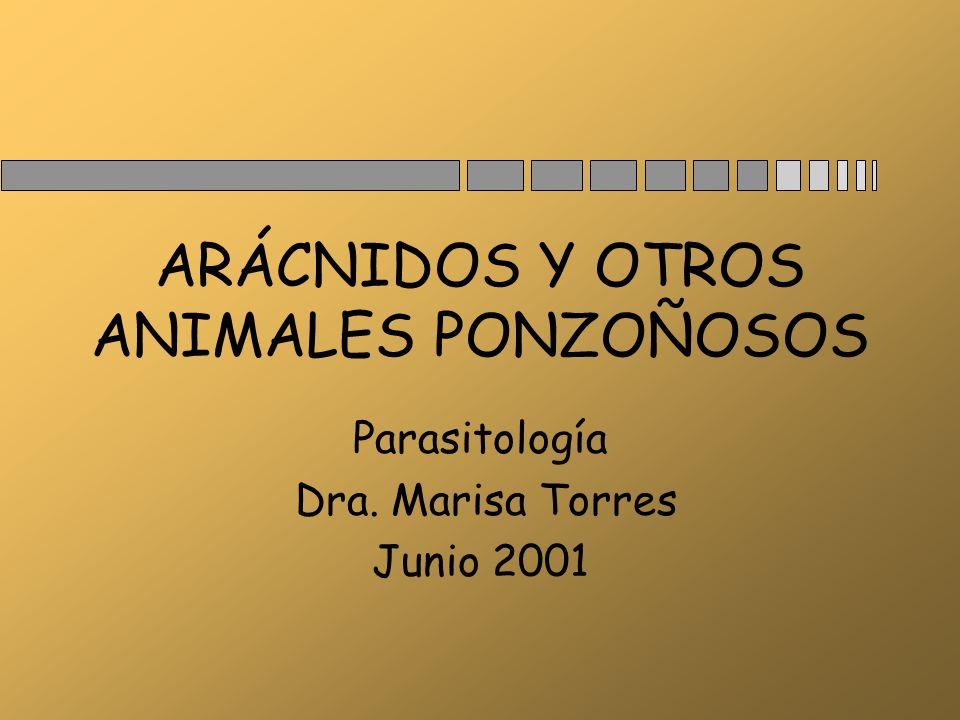 ARACNIDOS n Familia Género n Ctenidae Phoneutria n Theriidae Latrodectus n Sicariidae Lycosa Animales ponzoñosos