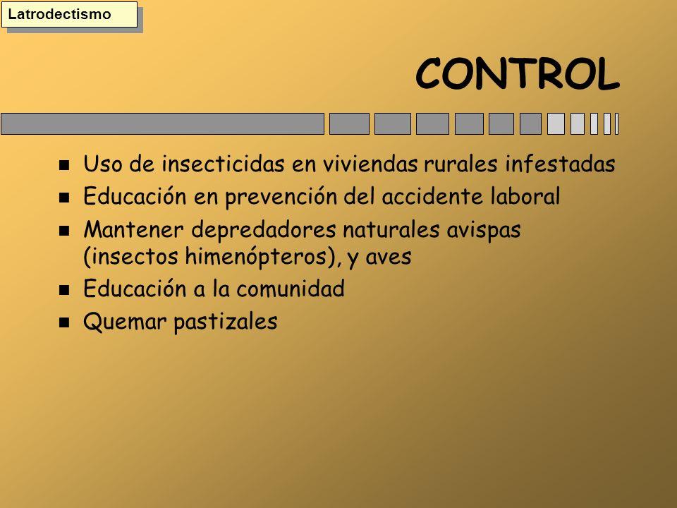 CONTROL n Uso de insecticidas en viviendas rurales infestadas n Educación en prevención del accidente laboral n Mantener depredadores naturales avispa