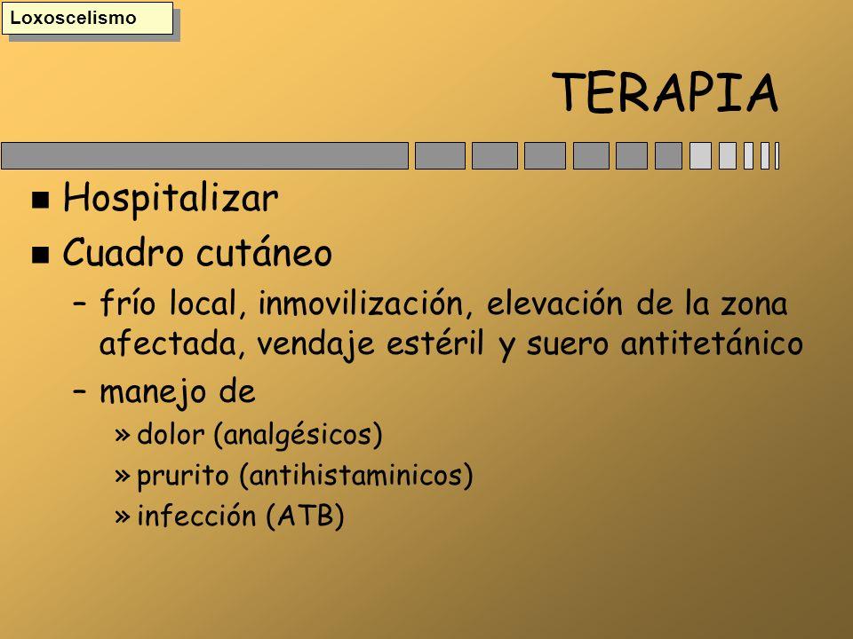 TERAPIA n Hospitalizar n Cuadro cutáneo –frío local, inmovilización, elevación de la zona afectada, vendaje estéril y suero antitetánico –manejo de »d