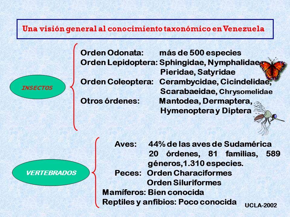 Una visión general al conocimiento taxonómico en Venezuela INSECTOS Orden Odonata: más de 500 especies Orden Lepidoptera: Sphingidae, Nymphalidae, Pie