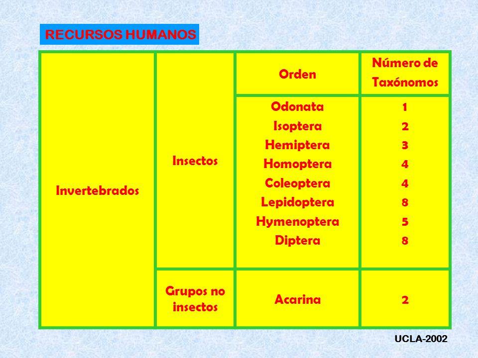 RECURSOS HUMANOS Invertebrados Insectos Orden Número de Taxónomos Odonata Isoptera Hemiptera Homoptera Coleoptera Lepidoptera Hymenoptera Diptera 1234