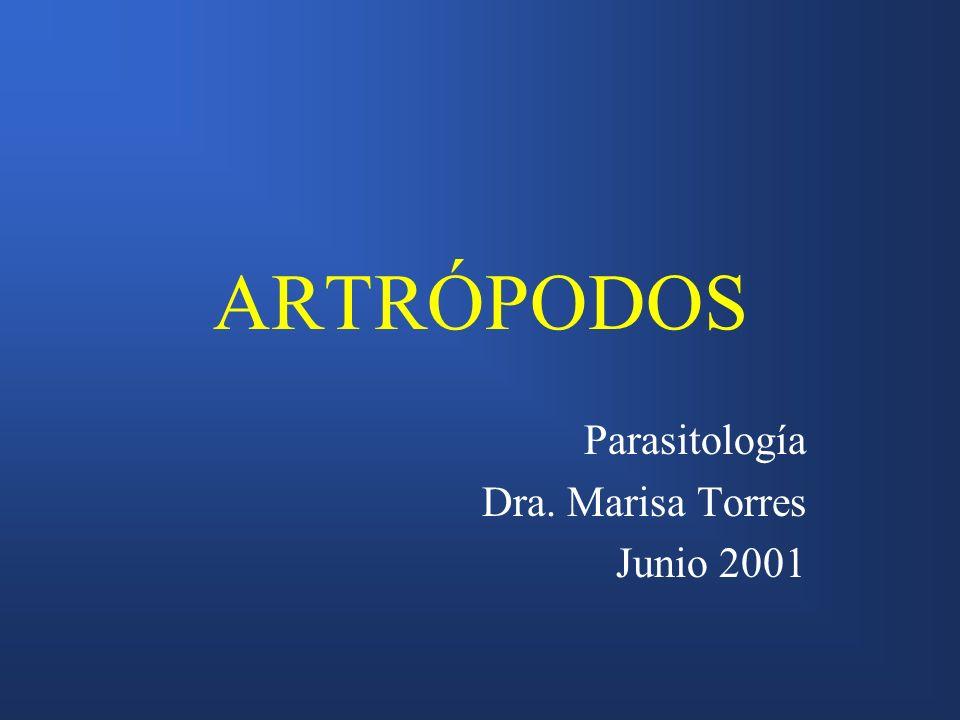 ARTRÓPODOS Parasitología Dra. Marisa Torres Junio 2001