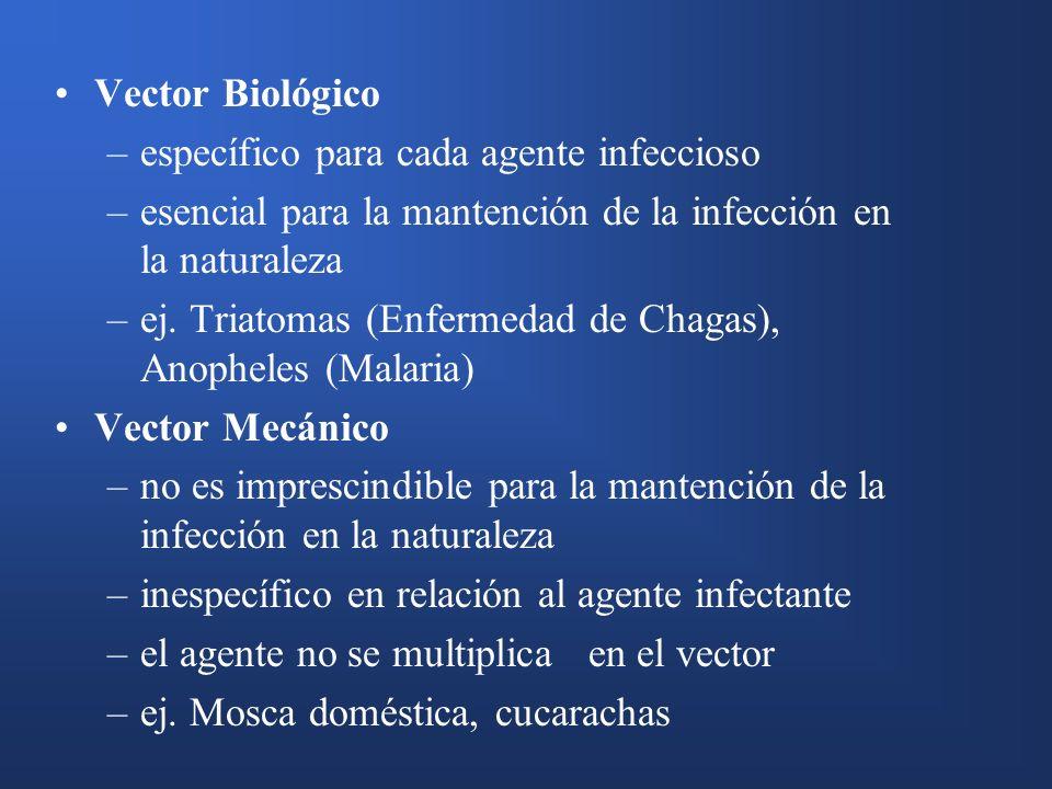 Vector Biológico –específico para cada agente infeccioso –esencial para la mantención de la infección en la naturaleza –ej. Triatomas (Enfermedad de C