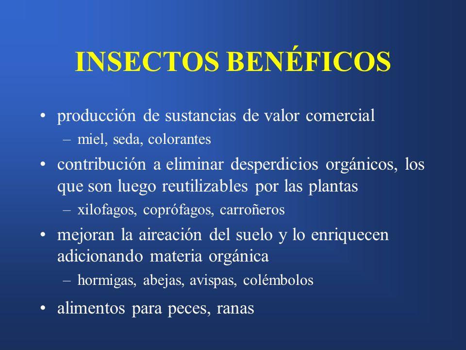 INSECTOS BENÉFICOS producción de sustancias de valor comercial –miel, seda, colorantes contribución a eliminar desperdicios orgánicos, los que son lue