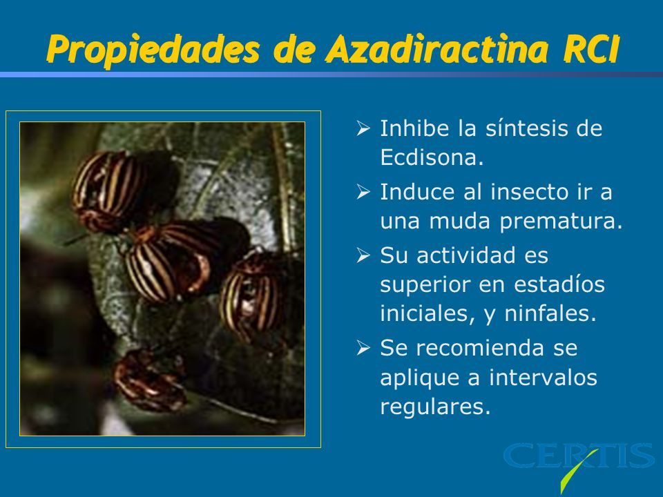 Tim, This picture is of Colorado Potato Beetle Treated With Azadirachtin.