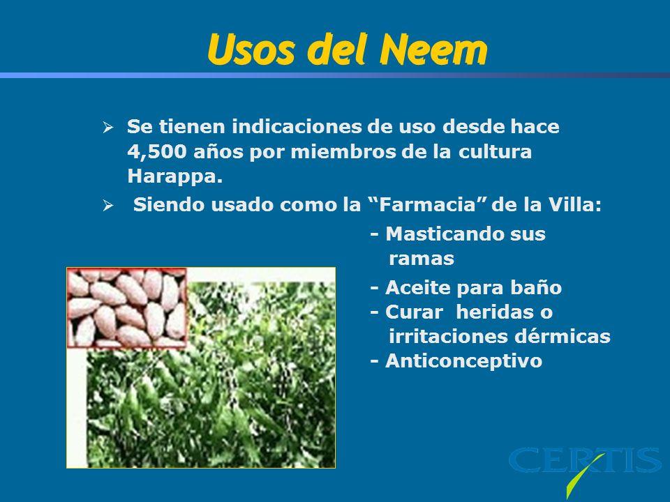 Usos del Neem Se tienen indicaciones de uso desde hace 4,500 años por miembros de la cultura Harappa. Siendo usado como la Farmacia de la Villa: - Mas