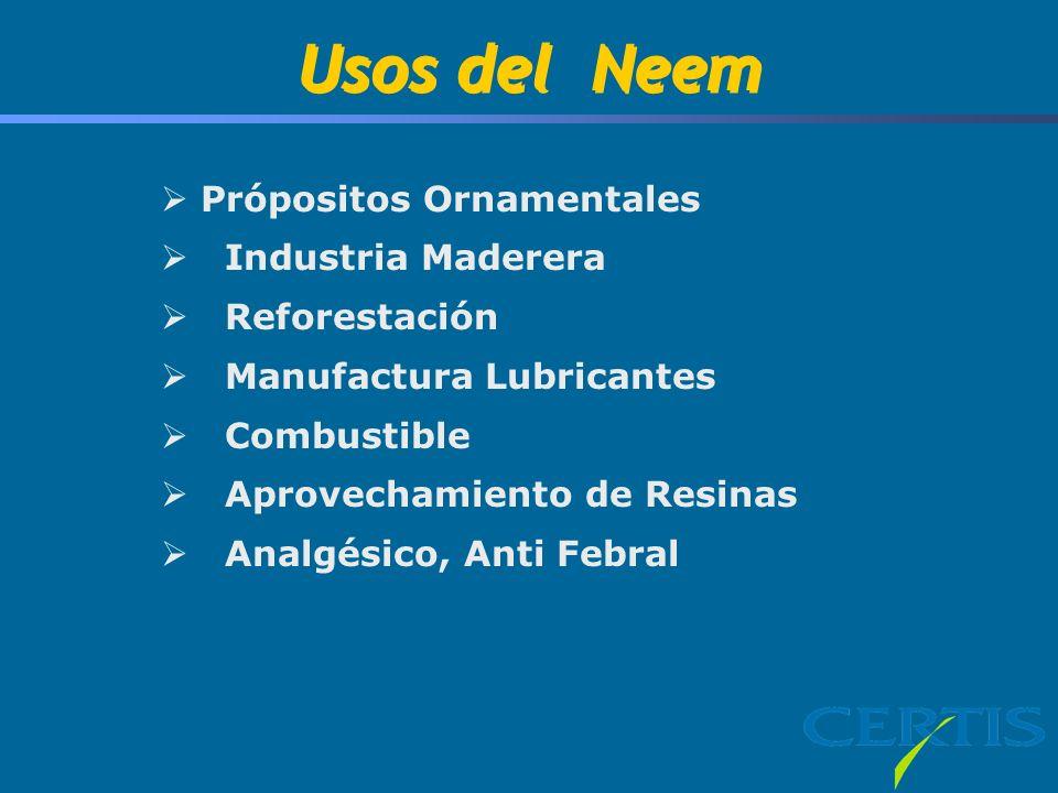Usos del Neem Própositos Ornamentales Industria Maderera Reforestación Manufactura Lubricantes Combustible Aprovechamiento de Resinas Analgésico, Anti Febral