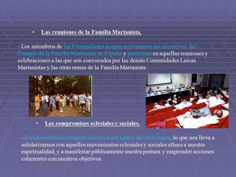 Las reuniones de la Familia Marianista. - Los miembros de las Fraternidades acogen activamente las iniciativas del Consejo de la Familia Marianista de