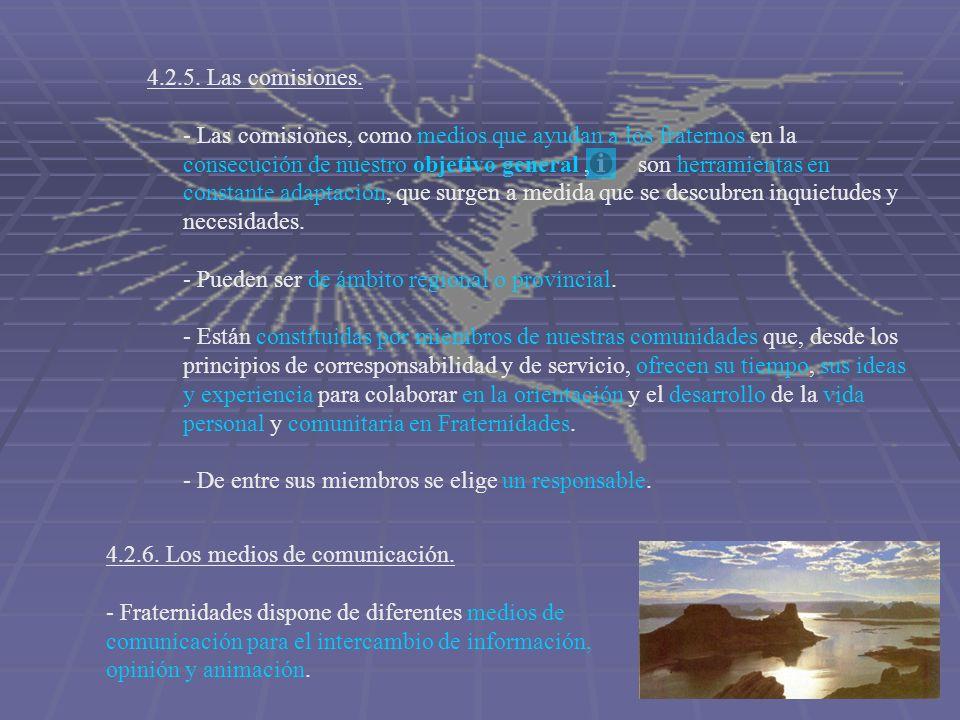 4.2.5. Las comisiones. - Las comisiones, como medios que ayudan a los fraternos en la consecución de nuestro objetivo general, son herramientas en con