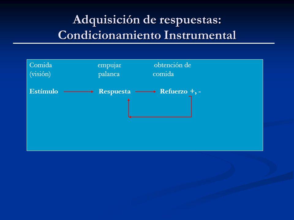 Adquisición de respuestas: Condicionamiento Instrumental Comida empujar obtención de (visión) palanca comida Estímulo Respuesta Refuerzo +, -