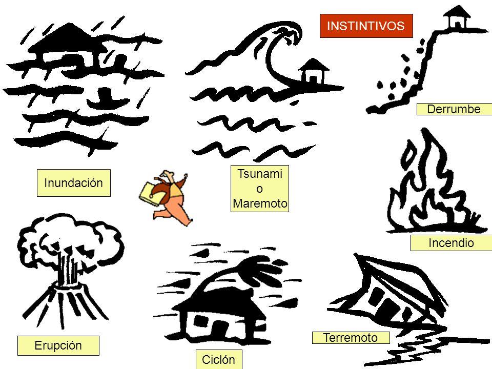 16 Inundación Tsunami o Maremoto Derrumbe Incendio Terremoto Ciclón Erupción INSTINTIVOS