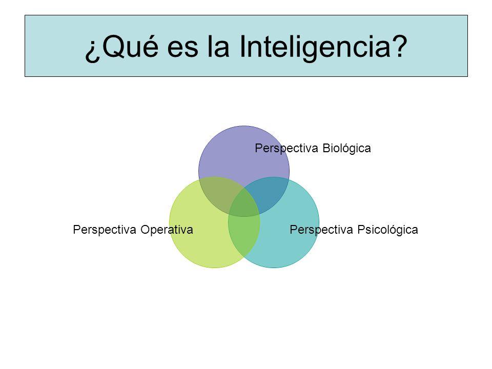 ¿Qué es la Inteligencia? Perspectiva Biológica Perspectiva PsicológicaPerspectiva Operativa